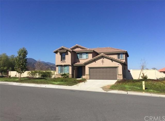 4125 Norris Street, Lake Elsinore, CA 92530 (#OC18085003) :: RE/MAX Empire Properties
