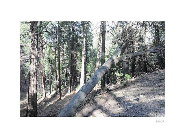 0 Mojave River Road, Cedarpines Park, CA  (#EV18088103) :: Angelique Koster