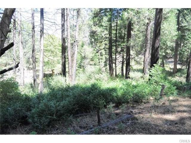 0 Mojave View Drive, Cedarpines Park, CA  (#EV18089197) :: Angelique Koster