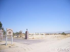 0 Fremont Road, Newberry Springs, CA 03036 (#WS18091240) :: The Ashley Cooper Team