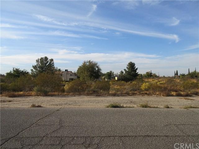 0 9th Avenue, Victorville, CA 10014 (#CV18091329) :: RE/MAX Empire Properties