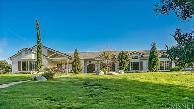 16402 Warmuth Road, Canyon Country, CA 91387 (#SR18088771) :: The Darryl and JJ Jones Team