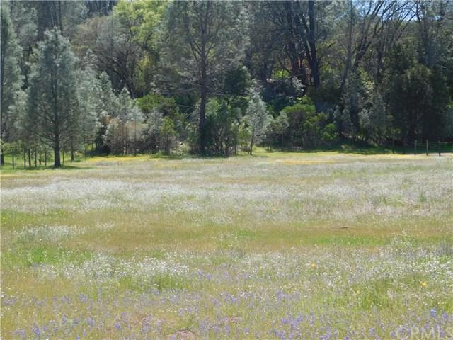 3025 Spring Valley Road, Clearlake Oaks, CA 95423 (#LC18092694) :: Kristi Roberts Group, Inc.