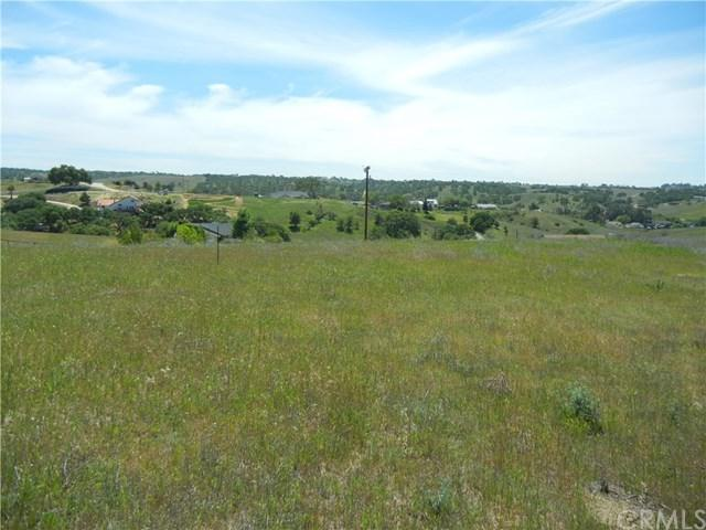 0 Black Tail Place, Paso Robles, CA 93446 (#NS18093990) :: The Laffins Real Estate Team