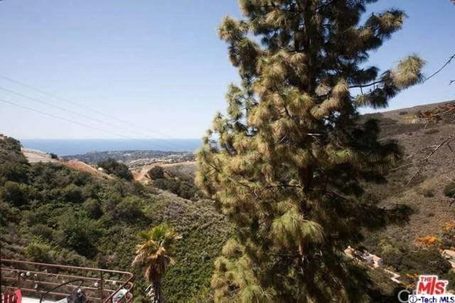 4361 Hillview Drive #2, Malibu, CA 90265 (#318001608) :: Fred Sed Group