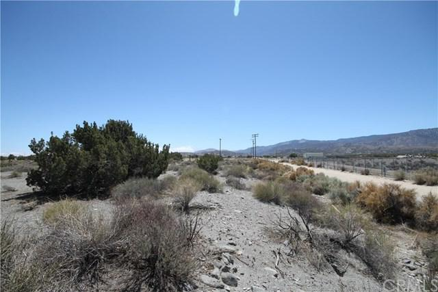 0 Buckwheat, Pinon Hills, CA 92372 (#IV18099165) :: Group 46:10 Central Coast