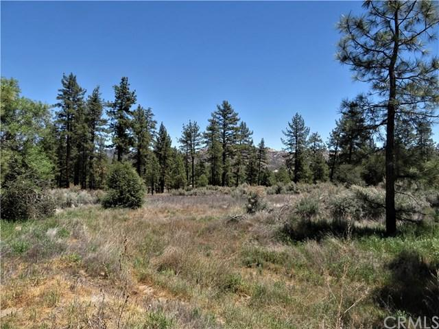 0 Devils Ladder Road, Mountain Center, CA 61036 (#SW18109587) :: Group 46:10 Central Coast