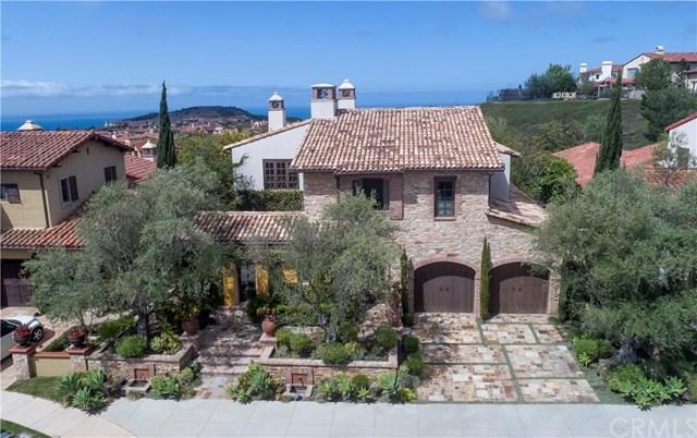 25 Observatory, Newport Coast, CA 92657 (#PW18117618) :: Fred Sed Group