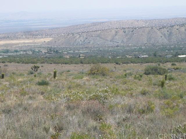 0 Vac/Juniper Hills Rd/Vic 121 S, Juniper Hills, CA 93543 (#SR18118942) :: Go Gabby