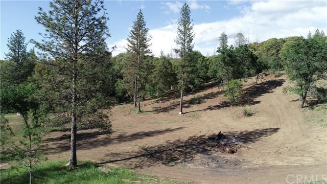 5340 Montana Del Oro, Mariposa, CA 95338 (#MP18119282) :: Impact Real Estate