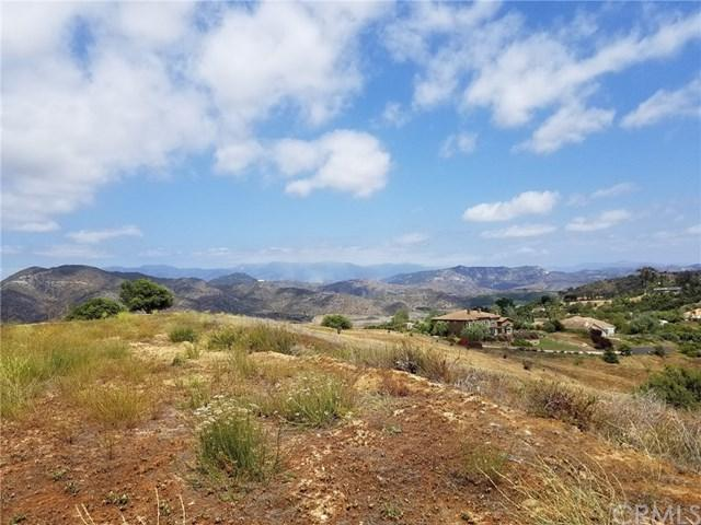 46 Dos Ninos Road, Fallbrook, CA 92028 (#SW18121122) :: Kristi Roberts Group, Inc.