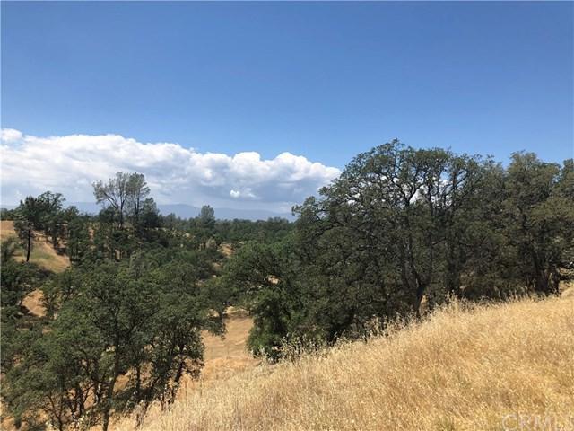 16695 Oakridge Road, Corning, CA 96021 (#SN18121677) :: California Realty Experts
