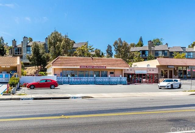 33501 Del Obispo Street, Dana Point, CA 92629 (#OC18122720) :: Fred Sed Group