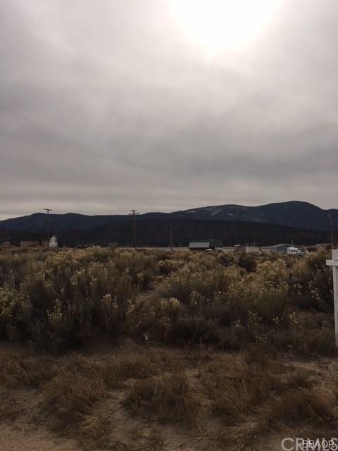 0 Mineola Drive, Big Bear, CA 92314 (#EV18131020) :: RE/MAX Masters