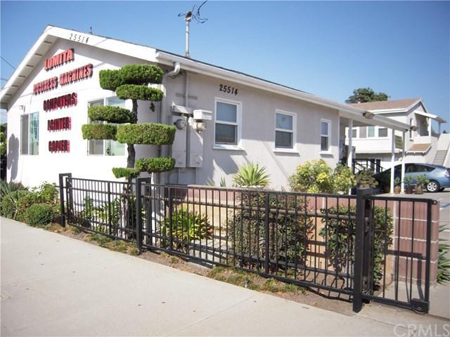 25514 Narbonne Avenue, Lomita, CA 90717 (#SB18143254) :: Kristi Roberts Group, Inc.