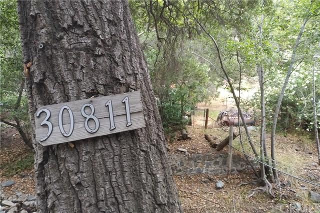 30811 Silverado Canyon Road, Silverado Canyon, CA 92676 (#PW18143676) :: Z Team OC Real Estate