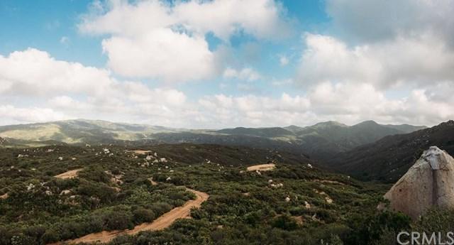 32895 Long Canyon Road, San Juan Capistrano, CA 92675 (#NP18146354) :: Pam Spadafore & Associates