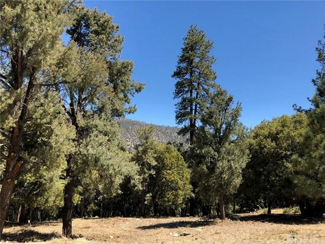 2235 Bernina Drive, Pine Mountain Club, CA 93222 (#SR18149016) :: RE/MAX Parkside Real Estate