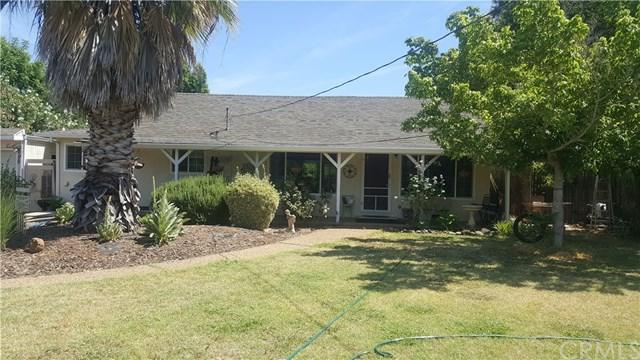 704 Madrone Avenue, Chico, CA 95926 (#SN18138807) :: The Laffins Real Estate Team