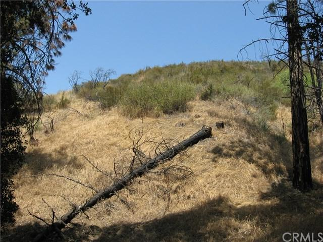0 North Trl, Kagel Canyon, CA 60188 (#BB18164150) :: Fred Sed Group