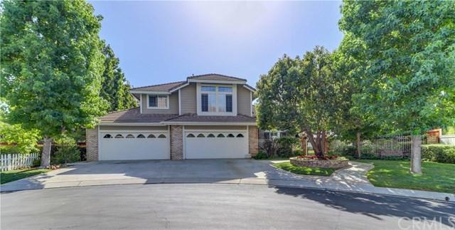 28951 Calle Susanna, San Juan Capistrano, CA 92675 (#OC18169797) :: Scott J. Miller Team/RE/MAX Fine Homes