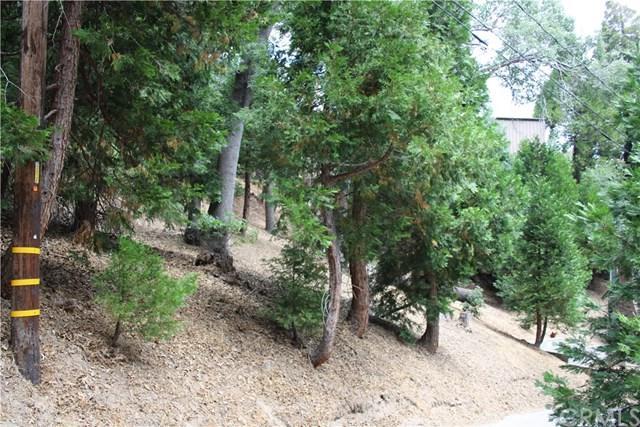 0 Silver Spruce Drive, Cedar Glen, CA 92321 (#IV18173653) :: Angelique Koster
