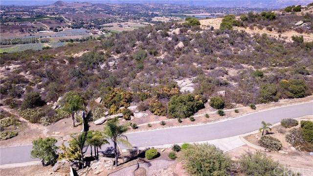 8-Acs Sun Rocks Dr 4, Valley Center, CA 92082 (#OC18173904) :: Allison James Estates and Homes