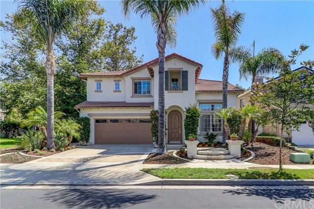 18 Calle Almeja, San Clemente, CA 92673 (#OC18175175) :: Z Team OC Real Estate