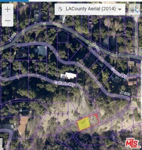 21821 Callado Way, Topanga, CA 90290 (#18369964) :: Z Team OC Real Estate