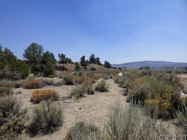 1 Chuchupate, Frazier Park, CA  (#SR18189001) :: RE/MAX Masters