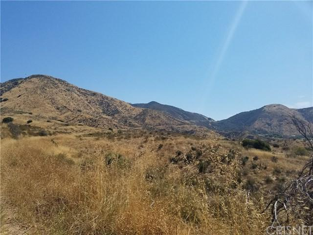 12807 Lopez Cyn.Rd/Kgy Trk Trail, Kagel Canyon, CA 91342 (#SR18194751) :: Fred Sed Group