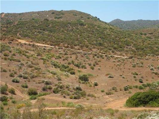 390 Old Hwy 80, Jacumba, CA 91934 (#150056523) :: Fred Sed Group