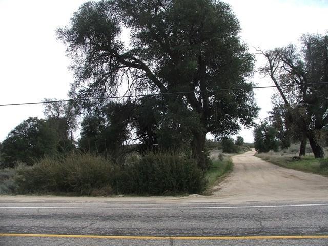 196 Montezuma Valley Road, Ranchita, CA 92066 (#180016512) :: Fred Sed Group