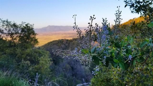 1023 Eagle Gap, Santa Ysabel, CA 92070 (#180030111) :: Fred Sed Group