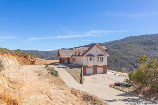 2101 Coulter Lane, Julian, CA 92036 (#SW18194442) :: Fred Sed Group