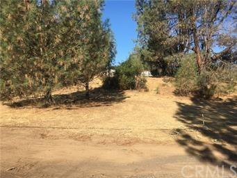 2932 Meadow Creek Road, Clearlake Oaks, CA 95423 (#LC18196446) :: RE/MAX Masters