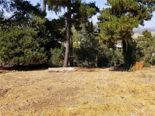 3275 Rogers Drive, Cambria, CA 93428 (#NS18195759) :: Group 46:10 Central Coast