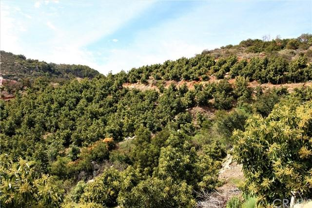 0 Carancho Rooad, Temecula, CA  (#SW18185449) :: Z Team OC Real Estate