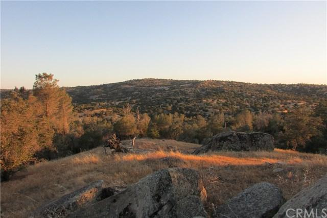 0 S Long Hollow Court, Coarsegold, CA 93614 (#FR18197866) :: Cal American Realty