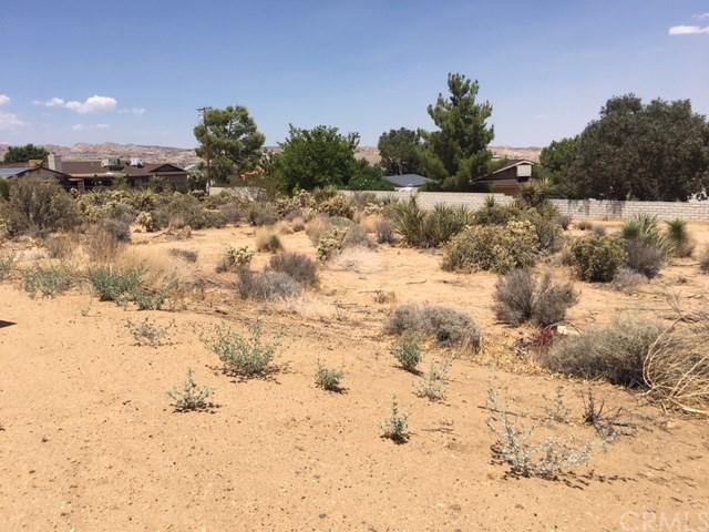 58772 La Mirada, Yucca Valley, CA 92284 (#JT18197844) :: Cal American Realty