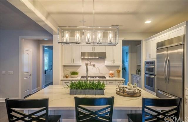 32764 Ocean Vista Court, Dana Point, CA 92629 (#LG18198061) :: Pam Spadafore & Associates
