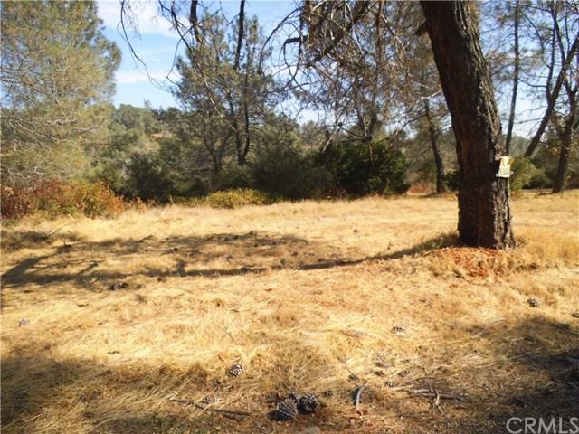 0 S Wayland Road, Paradise, CA 95969 (#PA18199043) :: Fred Sed Group