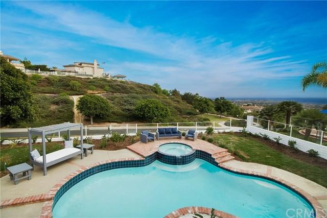 38 Richmond Hill, Laguna Niguel, CA 92677 (#OC18191354) :: Doherty Real Estate Group