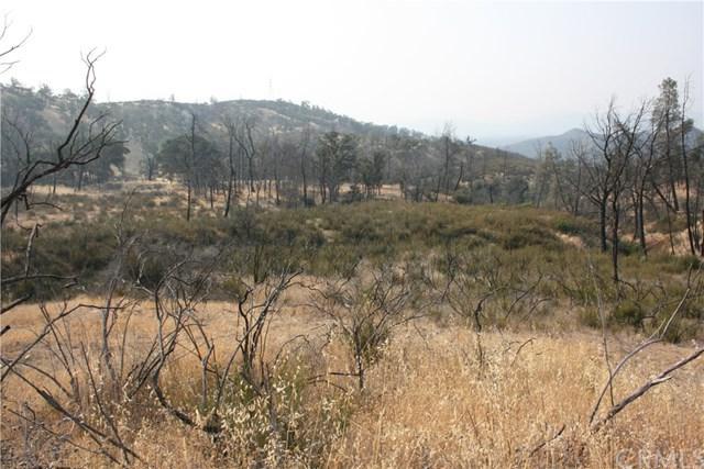 463 Mule Skinner, Clearlake Oaks, CA 95423 (#LC18209051) :: Impact Real Estate