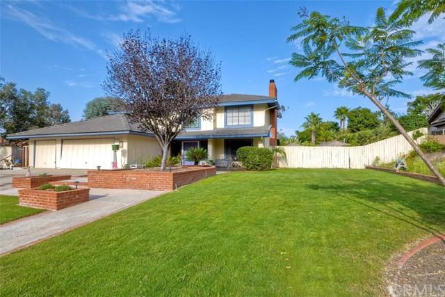 933 Springwood Lane, Encinitas, CA 92024 (#SW18211900) :: Barnett Renderos