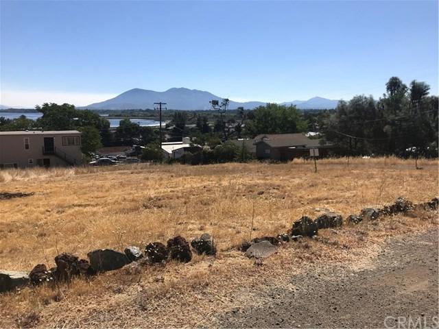 300 Grace Lane, Lakeport, CA 95453 (#LC18214252) :: The Laffins Real Estate Team