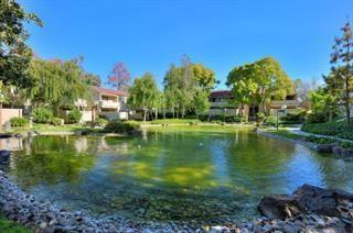 944 Kiely Boulevard D, Santa Clara, CA 95051 (#ML81722711) :: Fred Sed Group