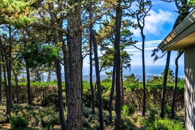32 Ocean Pines #32, Pebble Beach, CA 93953 (#ML81723156) :: Fred Sed Group