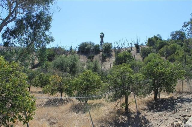 0 Daily Road, Fallbrook, CA 92028 (#SW18223692) :: The Ashley Cooper Team