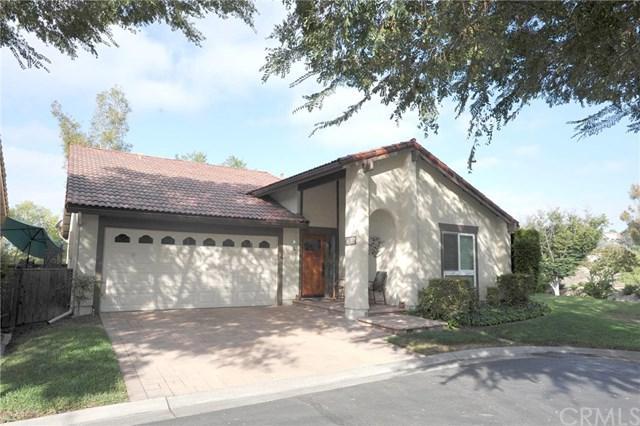 27635 Via Granados, Mission Viejo, CA 92692 (#OC18225432) :: Brad Feldman Group